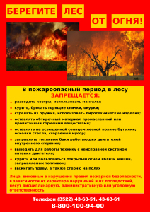 Памятка берегите лес от огня